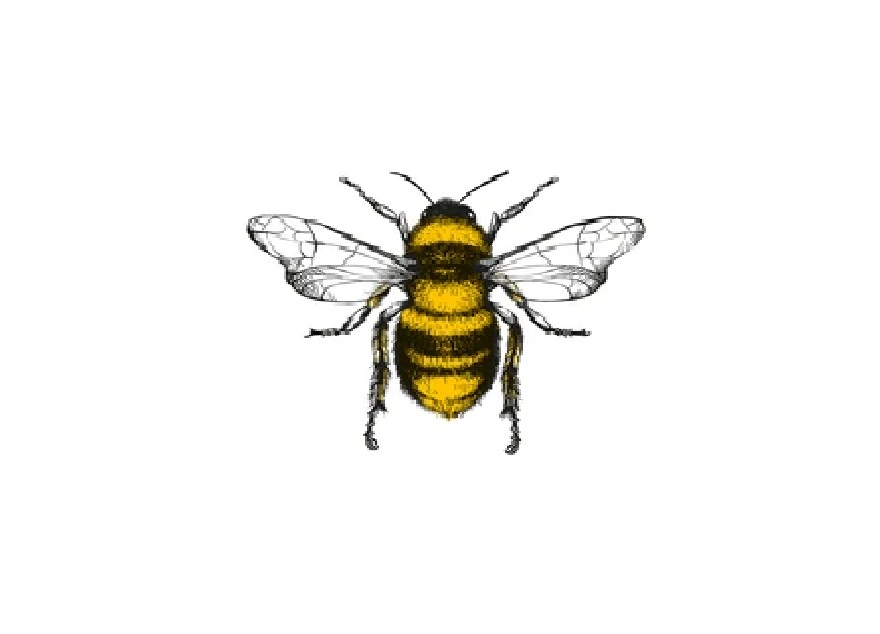 Bees - Nectar Injector